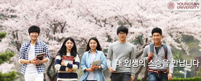 Du học Hàn Quốc visa thẳng cần những điều kiện gì?
