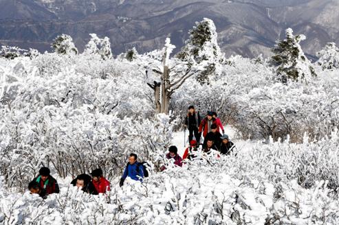 Rất nhiều du khách đến tham dự lễ hội núi tuyết Taekbaeksan