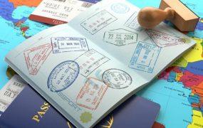 Lựa chọn visa 407